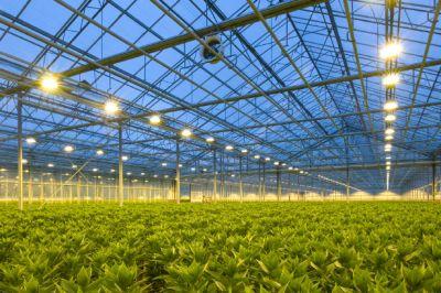 НаСтаврополье внедряют технологии искусственного климата