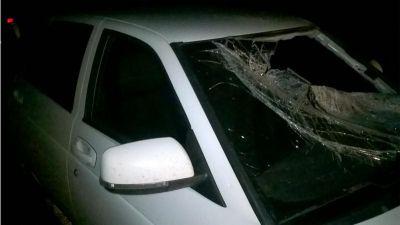 Девять человек погибли вночной трагедии наСтаврополье