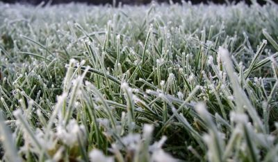 МЧС: Заморозки вПензенской области ожидаются до28сентября